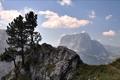 Картинка пейзаж, горы, природа, дерево